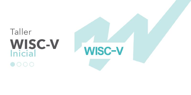imagen taller WISC-V inivel inicial