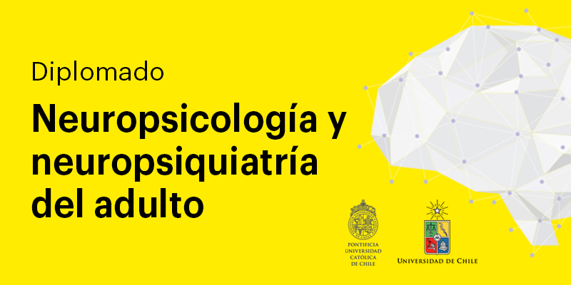 imagen de diplomado neuropsicología y neuropsiquiatría del adulto