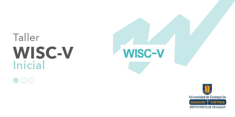imagen Taller WISC-V inicial Universidad de la Frontera