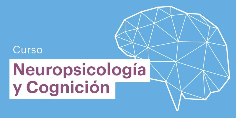imagen de curso de Neuropsicología y Cognición