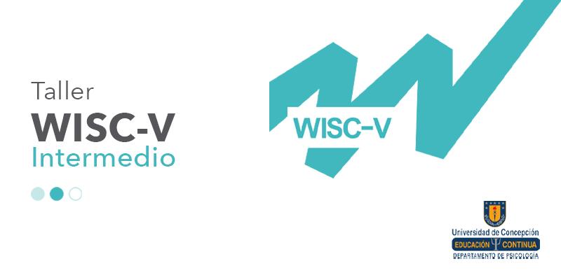 imagen Taller WISC-V intermedio Universidad de Concepción