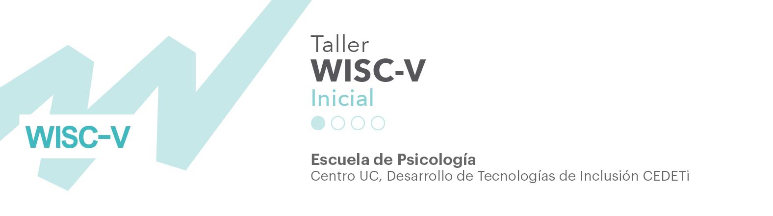 imagen de taller WISC-V nivel inicial